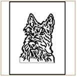Scottish Terrier Coloring Page
